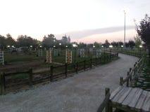 Noche S3 del área de la granja del caballo que camina Imagenes de archivo
