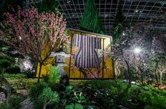 Noche Sakura Fotografía de archivo libre de regalías