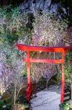 Noche Sakura en el jardín por la bahía imagen de archivo