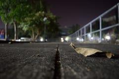 Noche silenciosa con la hoja Foto de archivo libre de regalías