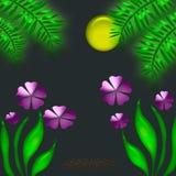 Noche tropical Foto de archivo libre de regalías