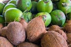 Noci di cocco Fotografia Stock