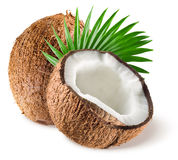 Noci di cocco con la foglia su fondo bianco Immagini Stock