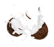 Noci di cocco con la spruzzata del latte Fotografia Stock