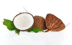 Noci di cocco con le foglie su fondo bianco Immagini Stock