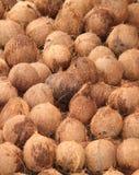 Noci di cocco da vendere. Fotografia Stock