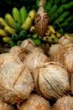 Noci di cocco e banane Fotografia Stock Libera da Diritti
