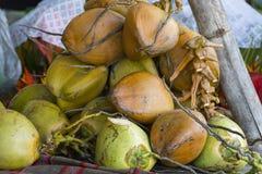 Noci di cocco fresche Fotografia Stock Libera da Diritti