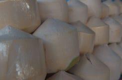 Noci di cocco fresche di file nel mercato Noce di cocco fresca della frutta tropicale nel mercato Immagine Stock