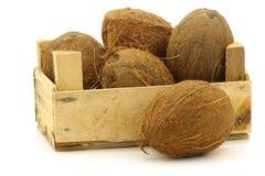 Noci di cocco fresche in una cassa di legno immagine stock libera da diritti
