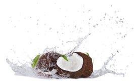 Noci di cocco incrinate nella spruzzata dell'acqua su bianco Fotografie Stock Libere da Diritti