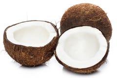 Noci di cocco su fondo bianco Immagini Stock Libere da Diritti