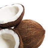 Noci di cocco su fondo bianco Fotografia Stock Libera da Diritti