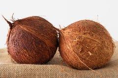 Noci di cocco su un tavolo da cucina, fondo bianco immagine stock