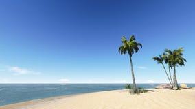 Noci di cocco sulla spiaggia. Immagini Stock
