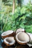 Noci di cocco sulla tavola di vetro nera isolata sopra il fondo vago delle palme Fotografia Stock