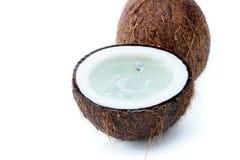 Noci di cocco tropicali mature fresche con acqua isolata su bianco Immagine Stock Libera da Diritti