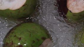 Noci di cocco verdi fresche su ghiaccio da vendere al mercato asiatico di notte della via video d archivio