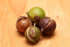 Noci di macadamia Immagini Stock Libere da Diritti