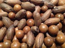 Noci di macadamia e noci americane con le coperture Fotografia Stock