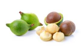 Noci di macadamia su fondo bianco Fotografia Stock