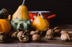 Noci e mini zucche sulla tavola rustica Immagine Stock
