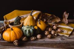Noci e mini zucche sulla tavola rustica Fotografia Stock