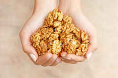 Nutes adorabili Fotografia Stock