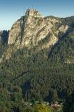 Nockstein a Salisburgo, Austria, Europa verticale Fotografie Stock