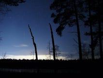 Nocne niebo meteor i gwiazdy Zdjęcia Royalty Free