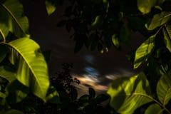 Nocne niebo unosi się chmury Obraz Royalty Free
