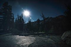 Nocne niebo w Yosemite parku narodowym Fotografia Royalty Free