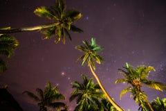 Nocne niebo w Zanzibar wyspie Fotografia Royalty Free