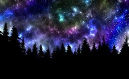 Nocne niebo z gwiazd i drzew natury tłem Obraz Stock