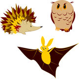 Nocturnal animals. Hedgehog, owl and bat - nocturnal animals Royalty Free Stock Image