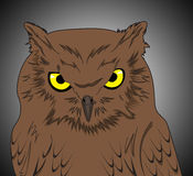 Nocturnal bird. Illustration of a owl with sharps eyes Stock Photo