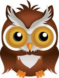 Nocturnal Owl Stock Photo