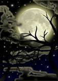 Nocturnal sky with stars and moon Royalty Free Stock Photo