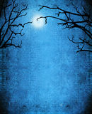 Nocturne mistery background Stock Photo