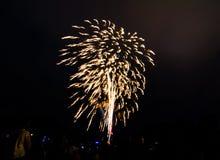 Nocy fotografia fajerwerki dla nowego roku świętowania 2018 above ludzi przy Parramatta parkiem, Sydney, Australia zdjęcia royalty free