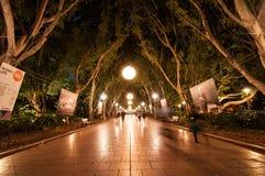 Nocy fotografia Hyde park z piękną jaskrawą lekką dekoracją wzdłuż bruku zdjęcia royalty free