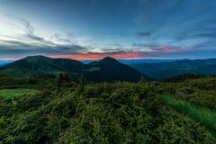 Nocy góry krajobraz, natury tło z zielonymi roślinami i niebieskie niebo, Carpathians Zdjęcie Stock