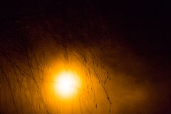Nocy latarnia uliczna w parku Fotografia Royalty Free