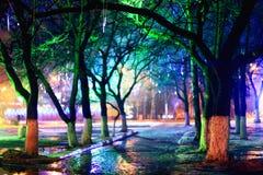 Nocy miasta parka światła Zdjęcie Royalty Free