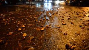 Nocy miasta raod z żółtym atutmn opuszcza na drodze zbiory wideo