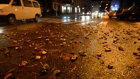 Nocy miasta raod z żółtym atutmn opuszcza na drodze zdjęcie wideo