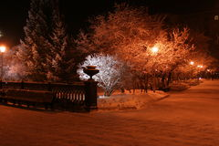 nocy oświetlenia Nowosybirsku. Zdjęcie Royalty Free