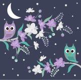Nocy sowy Obraz Royalty Free