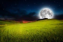 Nocy tło obrazy royalty free