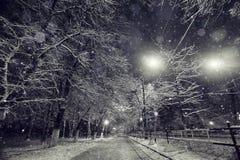 Nocy tło z śnieżnymi gałąź obrazy royalty free